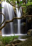 Waterfall. A small waterfall in a tropic setting, with a tree in the foreground Royalty Free Stock Photography