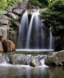 Waterfall. A small waterfall in a tropic setting, with a tree in the foreground Royalty Free Stock Photos