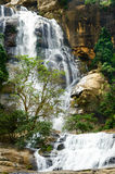 Waterfall. Big waterfall with green trees, Nuwara Eliya, Sri Lanka Stock Photo
