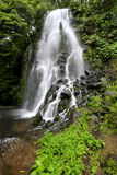 Waterfall. At Azores (Achada/Sao Miguel Island Royalty Free Stock Image