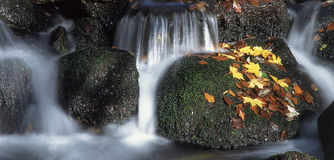 Waterfall. Wide angle view of autumn waterfall stock photos