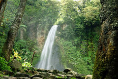 Waterfall. In Gede Mountain, Indonesia Stock Photos