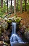 Waterfall. Beautiful waterfall in autumn forrest stock photos
