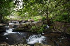 Waterfall8 στοκ φωτογραφία με δικαίωμα ελεύθερης χρήσης