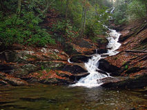 Waterfall. A river flowing throught the woods finds it final destination royalty free stock photos
