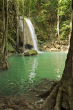 Waterfall. In Thailand. Fish in water on foreground Stock Image