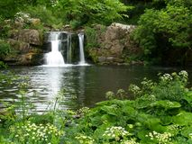 Waterfall. In tranquil place in rural Ireland Stock Images