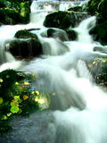 Waterfall. Peaceful stream waterfall in forest Royalty Free Stock Image