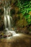 Waterfall. Beautiful mini waterfall in HDR Stock Photo