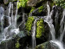 Waterfall. Despite being covered with slippery, slimy algae, fungus, and who knows what, many people find serenity by a waterfall Royalty Free Stock Images