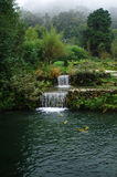 Waterfall. Two waterfall side pond,asia Stock Photo