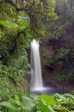 waterfall стоковые изображения