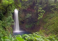 waterfall стоковые фотографии rf