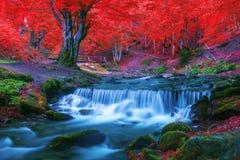 Free Waterfall Stock Image - 78223481