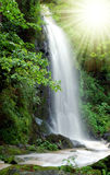 Waterfall. Beautiful waterfall in the National Park Tercino valley in the mountains Novohradske-Czech Republic Stock Images