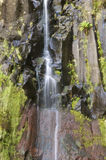 Waterfall. In a rocky wall with vegetation on the island of Madeira Royalty Free Stock Image