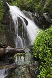 Waterfall. In the forest Royalty Free Stock Photo