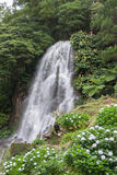Waterfall in Achada Nordeste on Sao Miguel, Azores Royalty Free Stock Photography