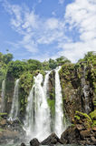 Waterfall  Adam and Eva. In the Iguasu Royalty Free Stock Photo