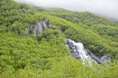 Waterfall in Alaska. A waterfall on a misty, tree covered mountain in Valdez, Alaska Royalty Free Stock Image