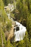 Waterfall along Beartooth Highway. Waterfall along the Beartooth Highway in Wyoming Royalty Free Stock Photos