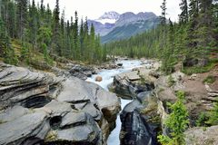 Waterfall along the Icefields Parkway in the Canadian Rockies between Banff and Jasper Royalty Free Stock Images