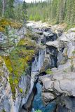 Waterfall along the Icefields Parkway in the Canadian Rockies between Banff and Jasper Royalty Free Stock Photos