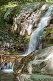 Waterfall along mountain stream Royalty Free Stock Photo