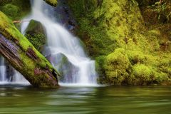 Waterfall along the Salmon River Mt. Hood National Forest. Seasonal waterfall sheets down the moss covered rocky banks along the Salmon River in Mt. Hood stock photos