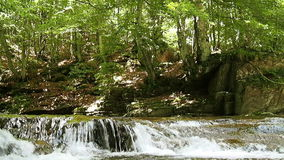 Waterfall in alpine forest stock video footage
