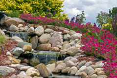 Waterfall And Petunias In Rock Garden Stock Image