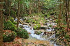 Waterfall And Stones Covered In Moss At Nakasendo Walking Trail Royalty Free Stock Photography