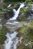Waterfall in the area of Mourne Mountains stock photography