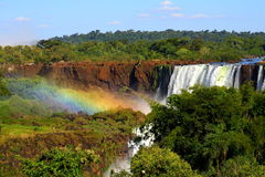 Waterfall in Argentina. These are the Iguazoo Falls in Argentina Royalty Free Stock Image