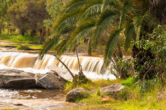 Waterfall in Australia Royalty Free Stock Image