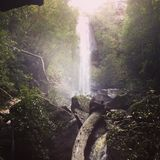 Waterfall. In the Australian bush Royalty Free Stock Images