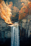 Waterfall in Autumn royalty free stock images