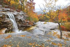 Waterfall In Autumn Stock Image