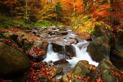 Waterfall in the autumn beech forest Royalty Free Stock Photography