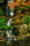 Waterfall in autumn closeup Royalty Free Stock Photo
