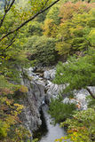 Waterfall in autumn colours Stock Photography