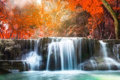 Waterfall autumn deep forest scenic natural sunlight stock images