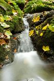 Waterfall in autumn. Waterfall in the fall with a lot of leaves around royalty free stock image