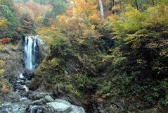 Waterfall autumn foliage Stock Image