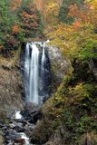 Waterfall autumn foliage Royalty Free Stock Photo