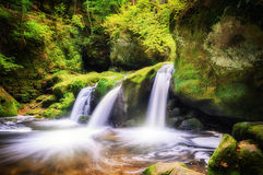 Waterfall in autumn forest. Beautiful waterfall in autumn forest Royalty Free Stock Images