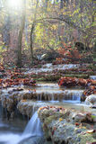 Waterfall in autumn forest. Beautiful waterfall flowing through the autumn forest with a lot of fallen leaves Stock Photos