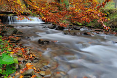 Waterfall in the autumn forest Royalty Free Stock Photography