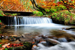 Waterfall in the autumn forest Royalty Free Stock Photo