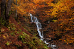 Waterfall at autumn forest Stock Image